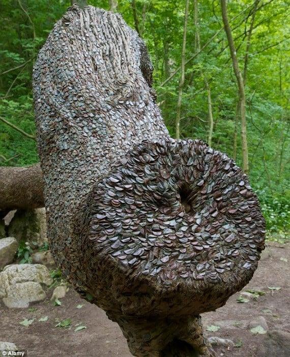 Wishing Trees Stump