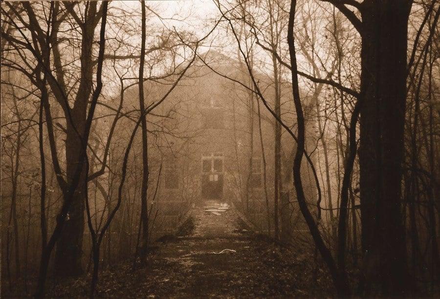 Foggy Exterior Farm Colony