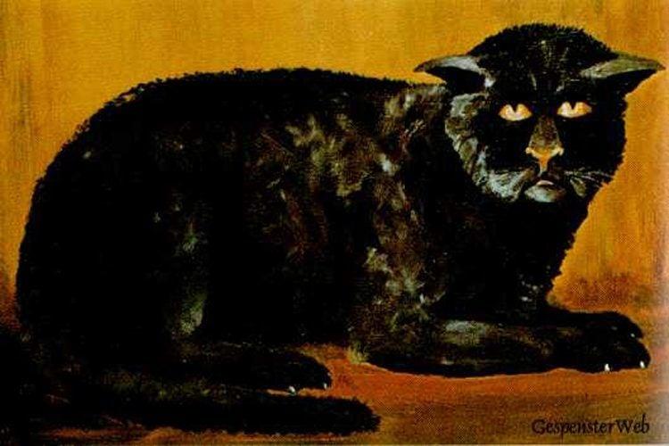 Hellfire Club Black Cat