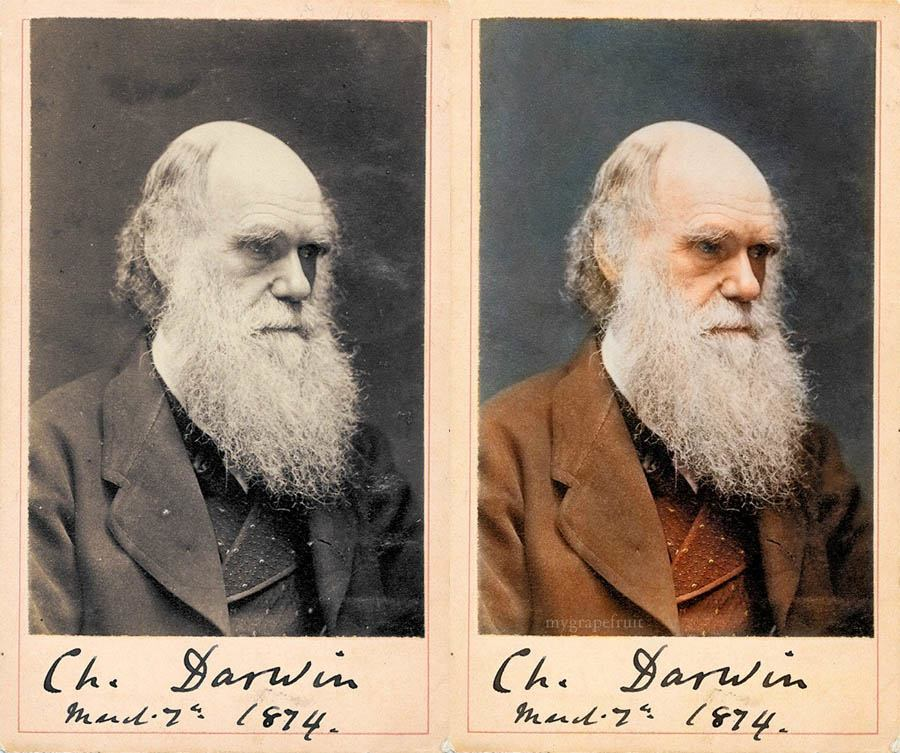 Charles Darwin In Color