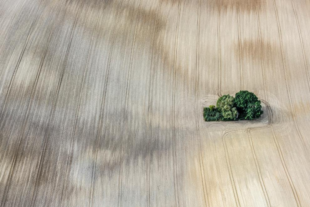 Aerial Photography Harvest