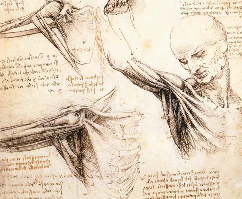 a study of the life and accomplishments of leonardo da vinci Study guides tough gcse topics  and the research was the fundamental point of his artistic and scientific accomplishments  of leonardo da vinci and the.
