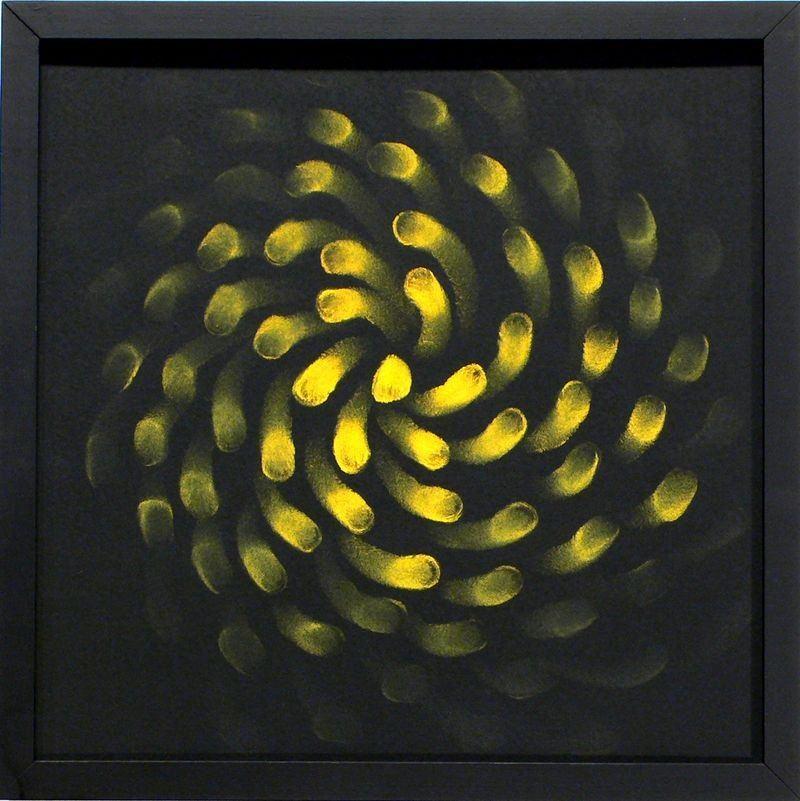 Judith Ann Braun Yellow