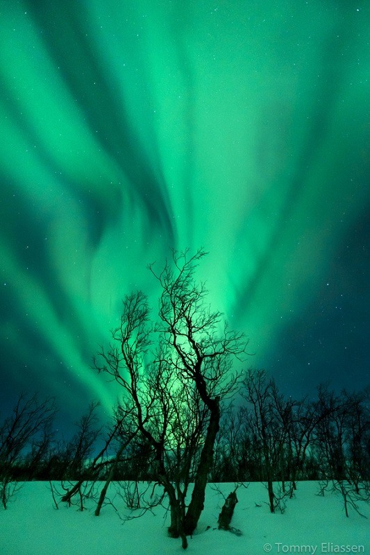 Pictures Of The Northern Lights