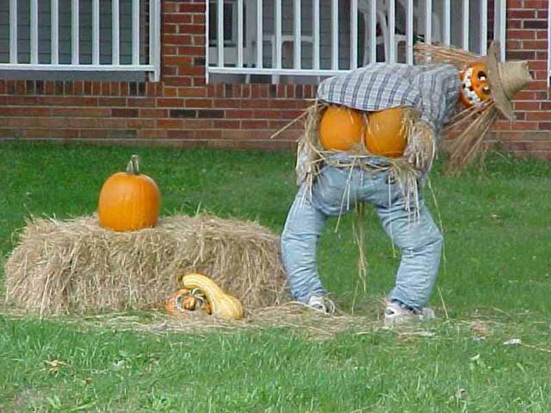 Obscene Gestures Mooning Scarecrow