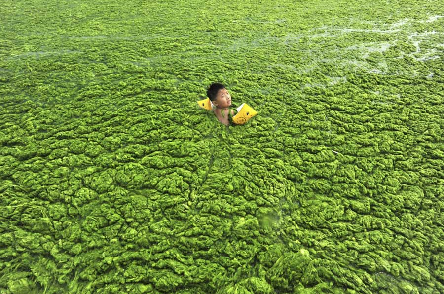 Chinese Pollution Water