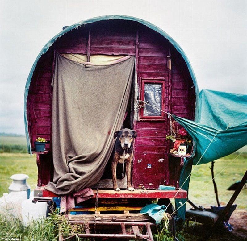 Contemporary Caravan