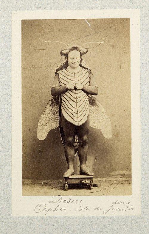 Butterfly Weird Halloween Costume