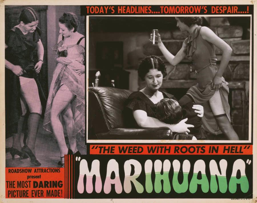 Marijuana Crime Film