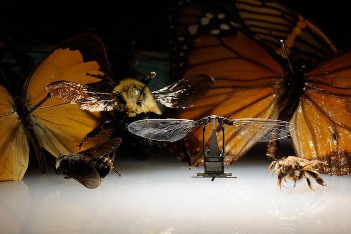 Miniature Gadgets Robo Bee 2
