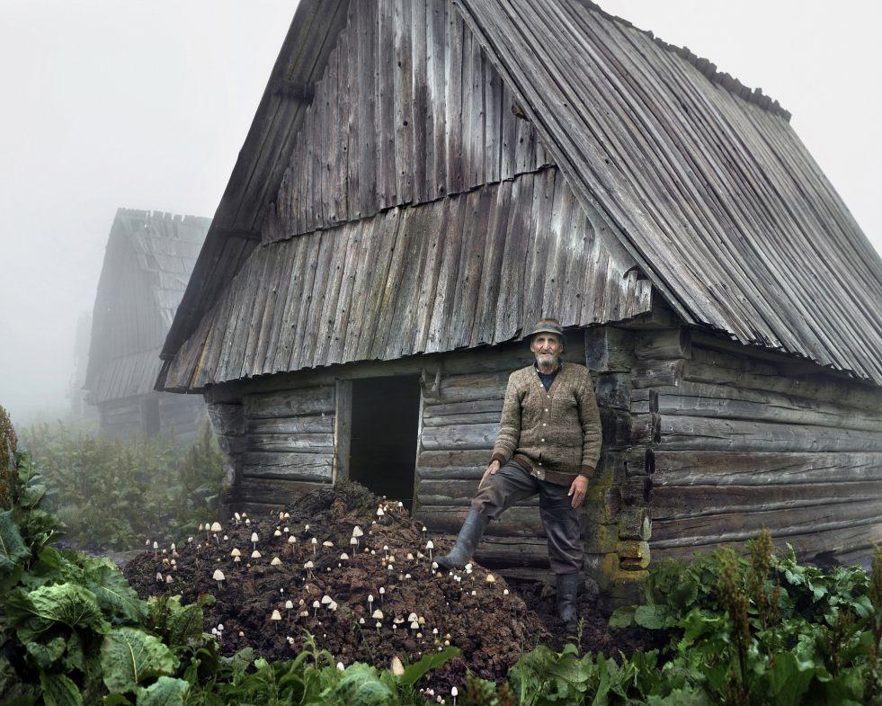 Romania Mushroom Hut