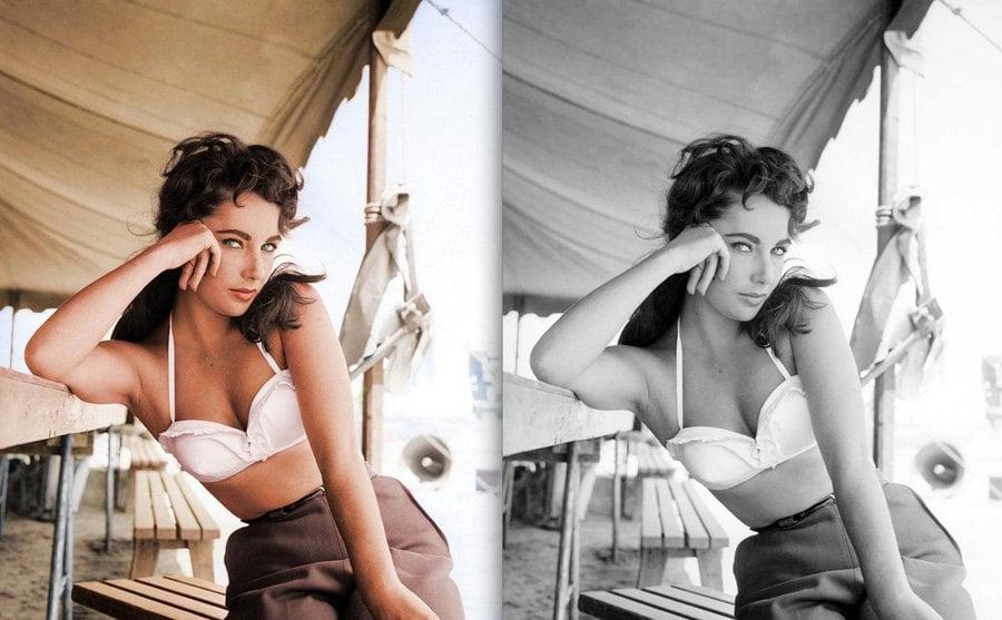 History In Color Elizabeth Taylor
