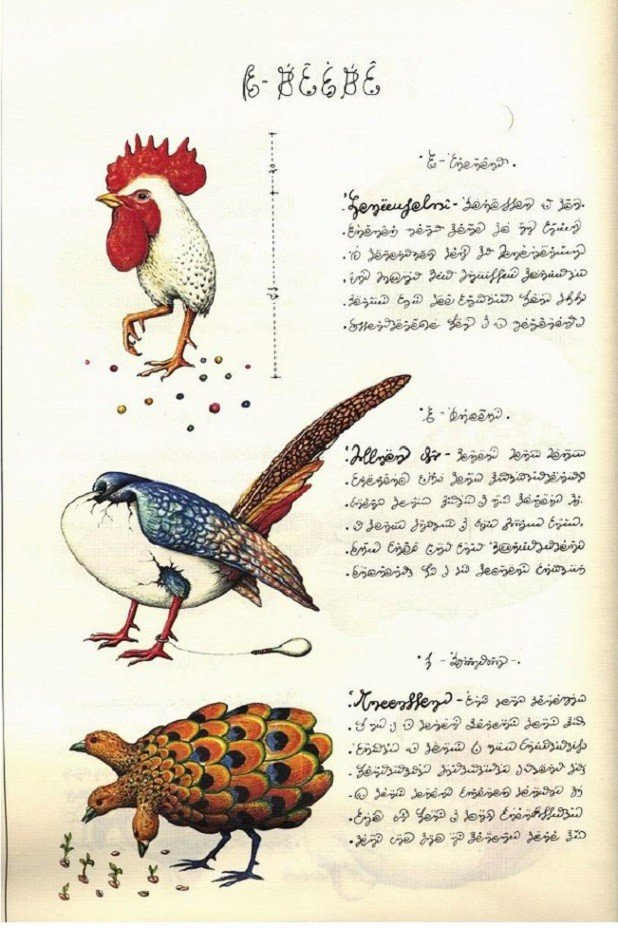 Codex Seraphinianus Pictures