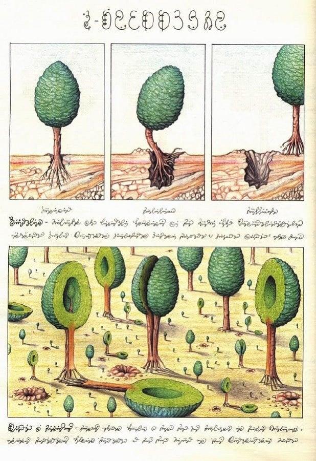 Codex Seraphinianus Hollow Trees