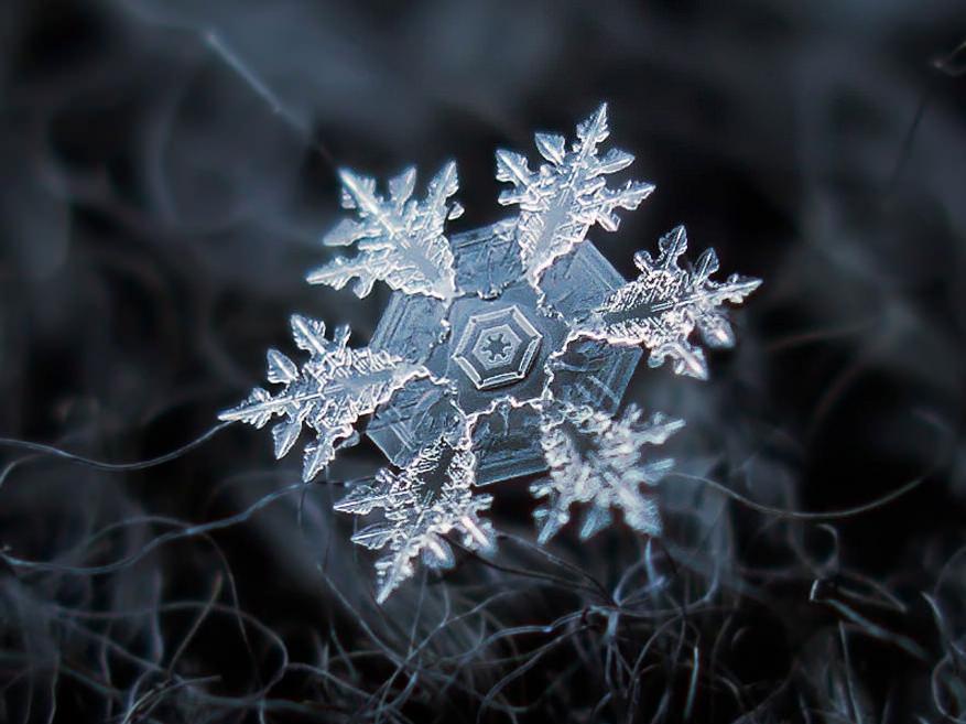 Macro Snowflakes Hexagon