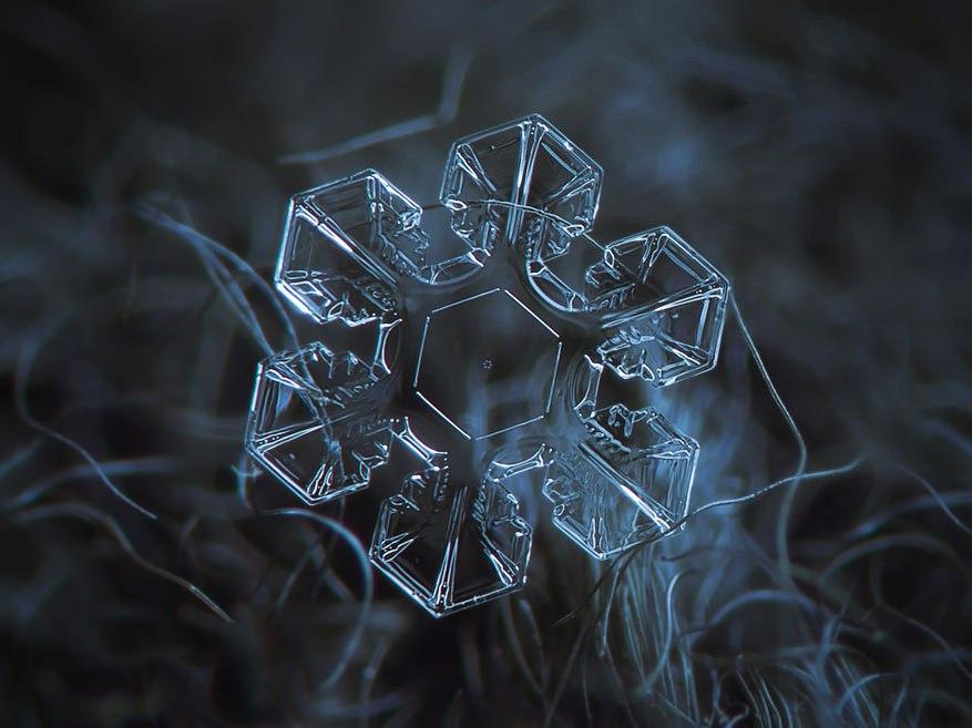 Macro Snowflakes Translucent