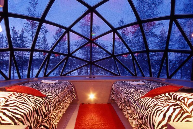 Igloo Village Zebra Bedroom