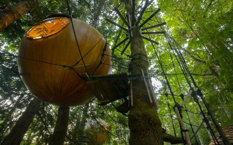 Free Spirit Spheres Under View
