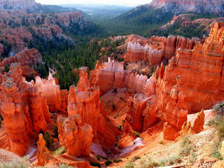Bryce Canyon Close Up