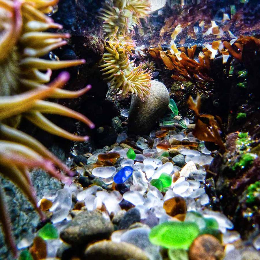 Glass Beach Underwater
