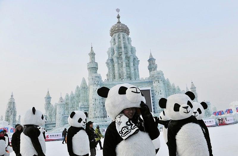 Pandas with Ice Sculptures