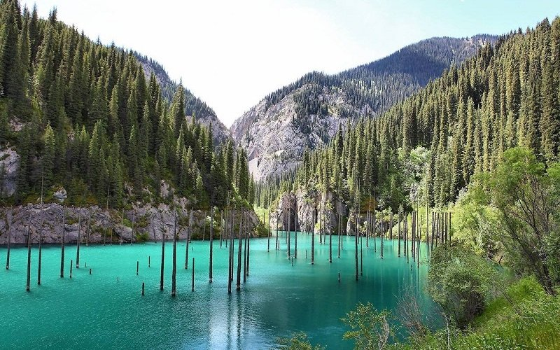 Beautiful Lake Kaindy in Kazakhstan