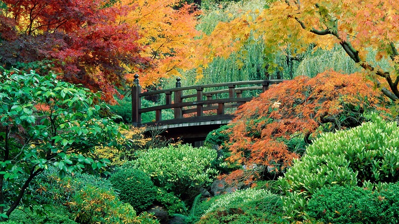 Bridge in the Japanese Gardens