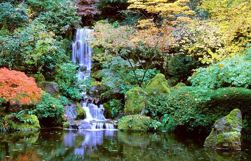 Portlands Breathtaking Japanese Gardens