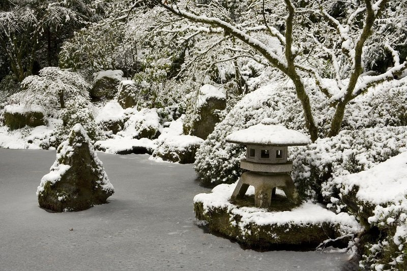 Portland's Japanese Gardens in Winter