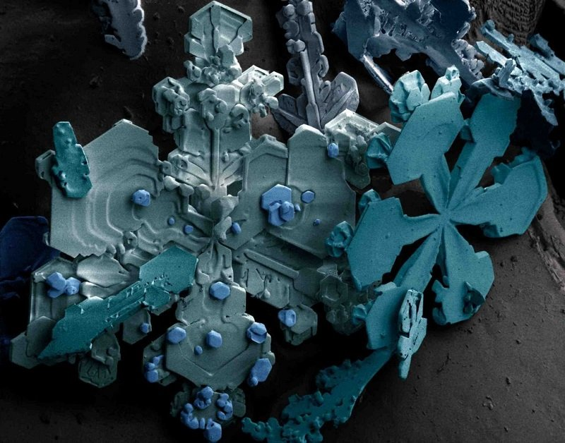 Microscopic Snow Crystals