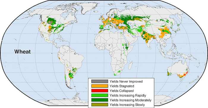25 Maps Global Crops