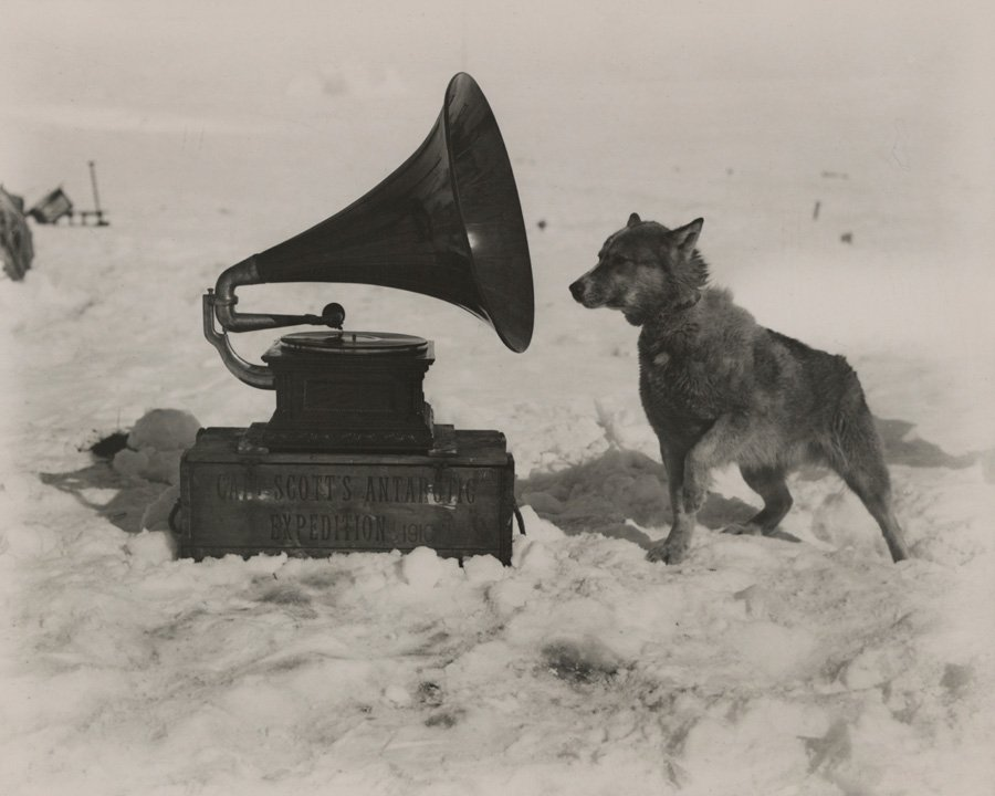 National Geographic Photos Gramophone Dog 1911