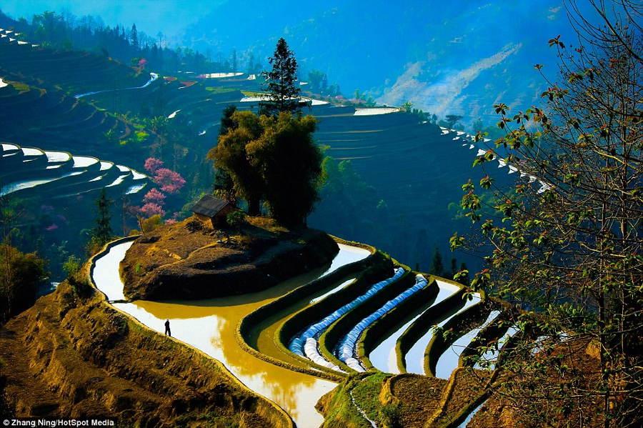China Landscape Home Terrace