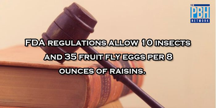 FDA Regulations On Raisins