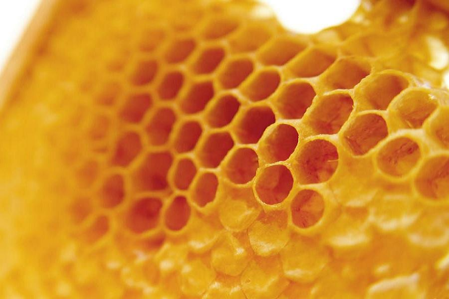 Giants Causeway Wax Honeycomb