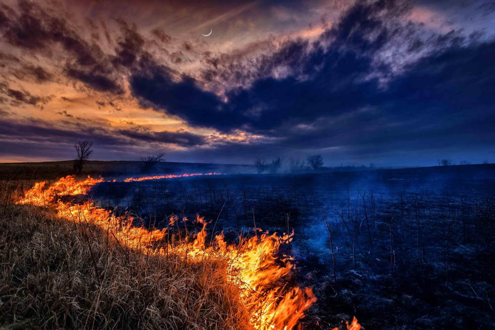 Nature Conservancy Contest Fire
