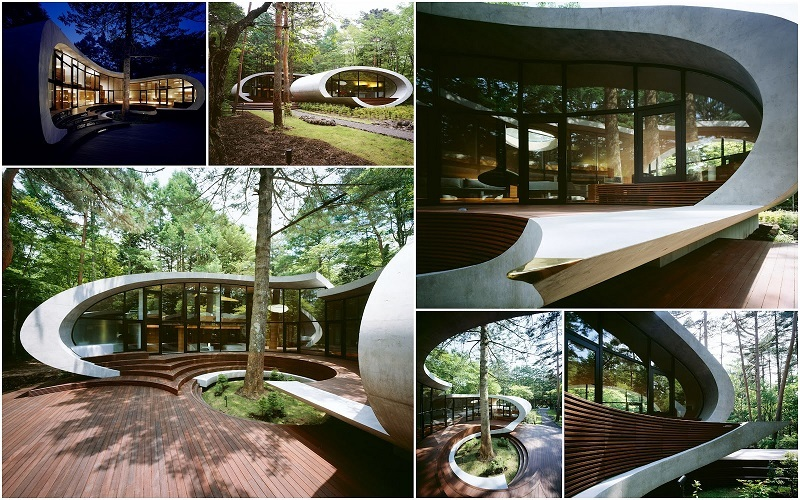 Visually Stunning Homes Look Like Shells