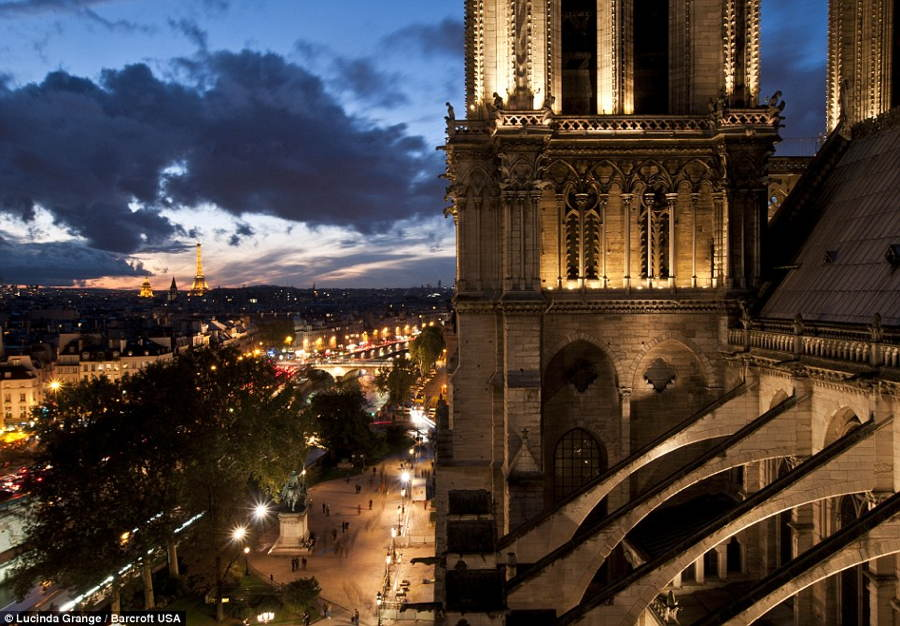 Lucinda Grange Notre Dame