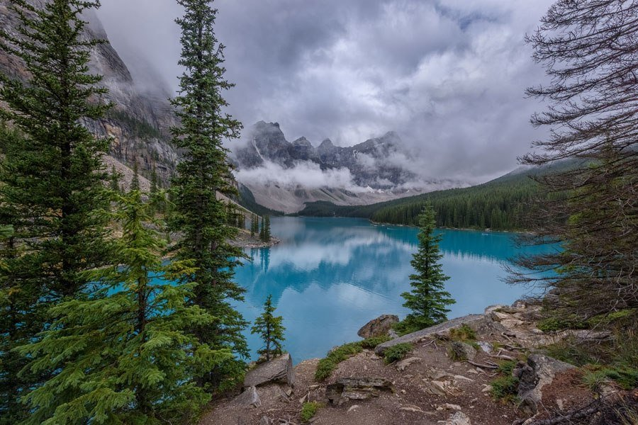 Unbelievable Places Moraine Lake Trees