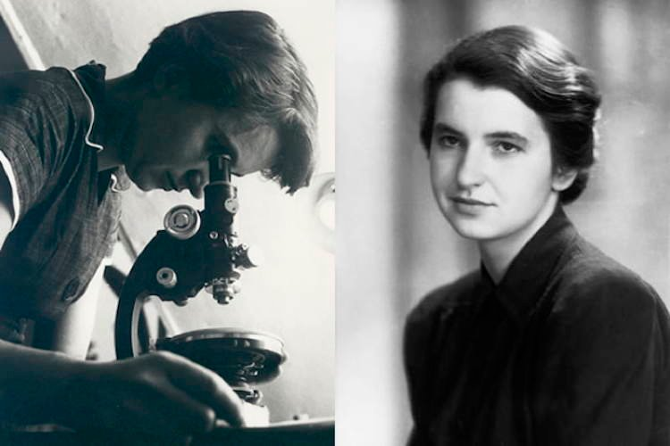 Scientific Heroes Rosalind Franklin