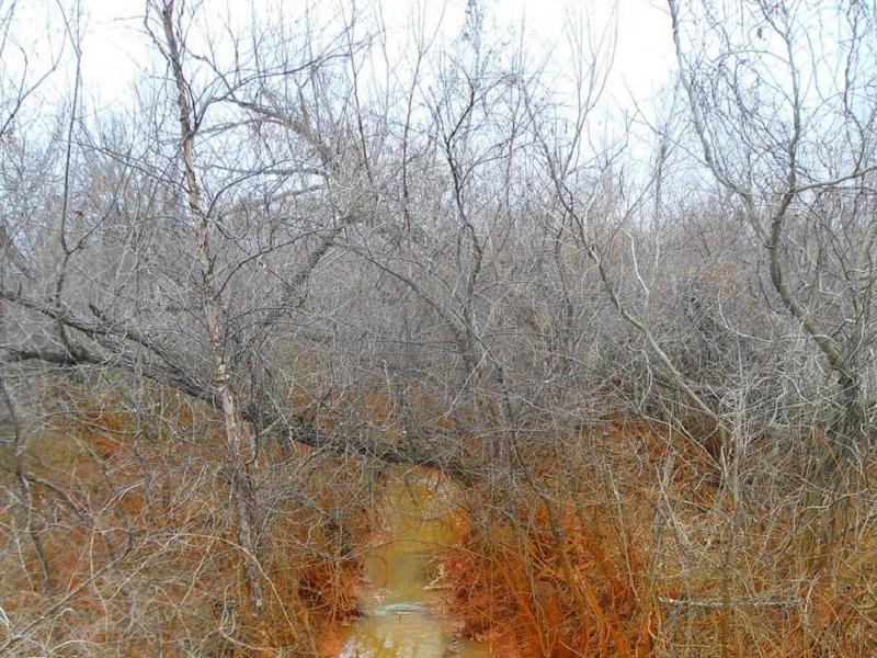 Three Places Contaminated Stream