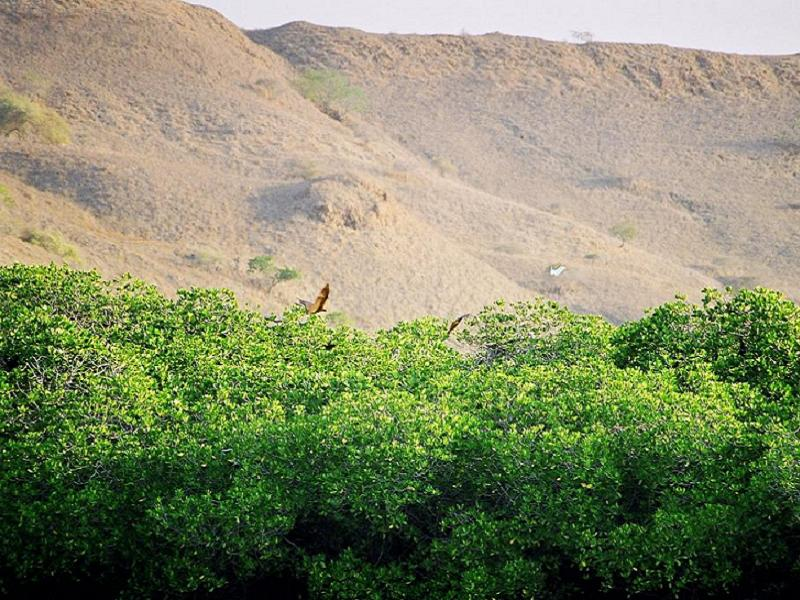 Three Places Komodo Island