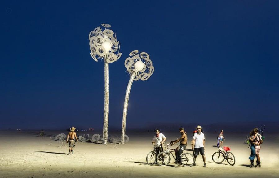 Burning Man Twilight Dandelion