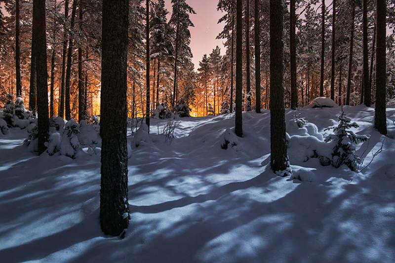 Nature Photographers Orange Horizon