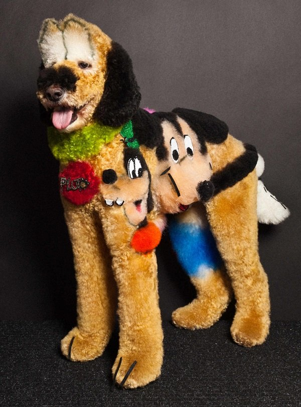 Pluto Creative Dog Grooming