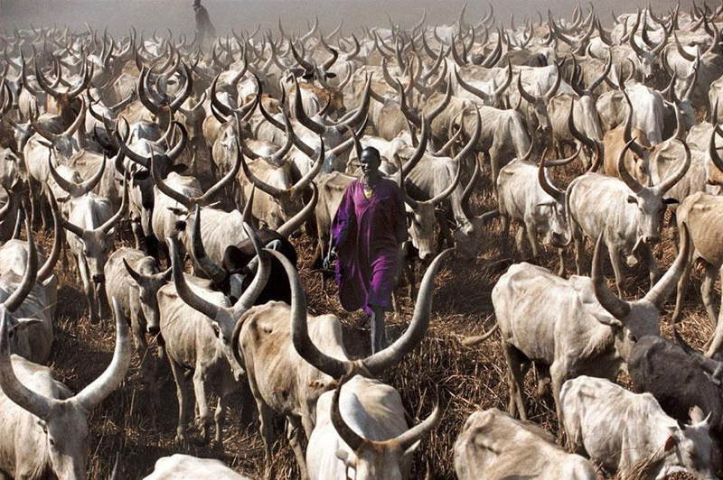Dinka Tribe Sudan Purple