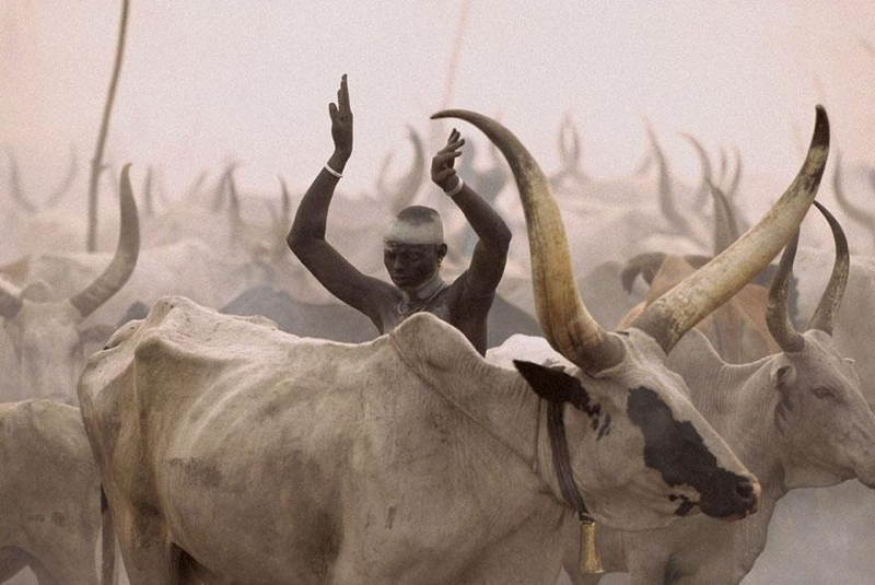 Dinka Tribe Sudan Arms