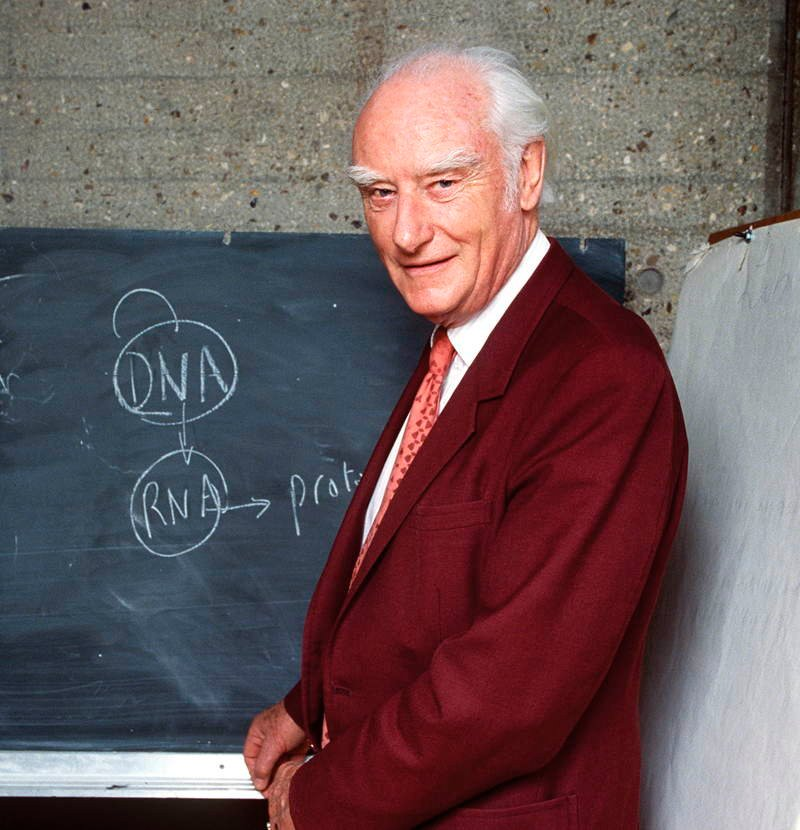Drug Discoveries Francis Crick