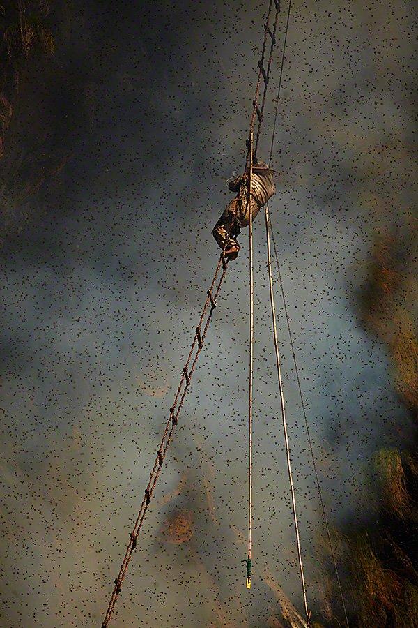 Gurung Tribe Member on Ladder