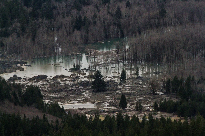 Washington Mudslide Stillaguamish River